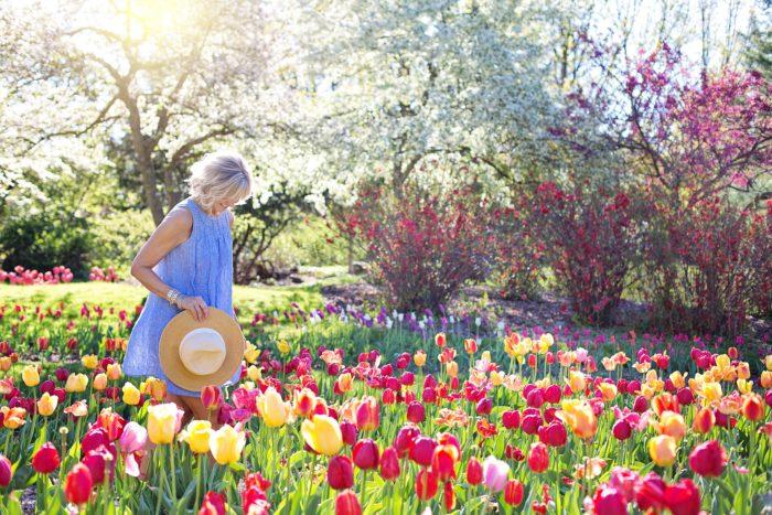 お花畑にいる女性