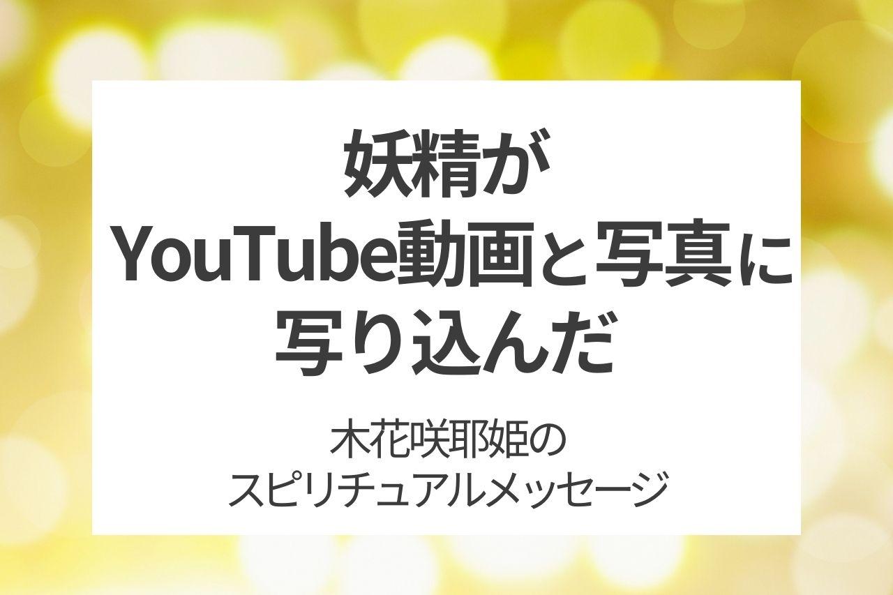 妖精がYouTube動画と写真に映り込んだ スピリチュアル