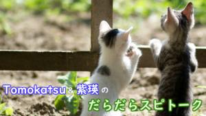 Tomokatsu&紫瑛のだらだらスピトーク