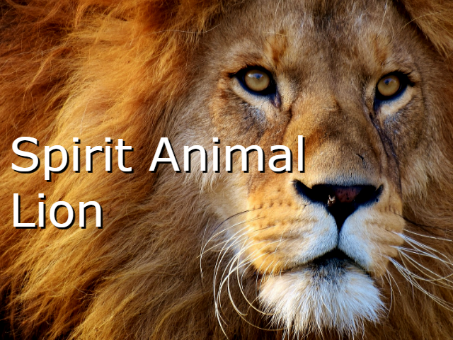 Spirit Animal Lion