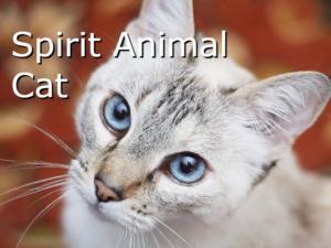 スピリットアニマル猫